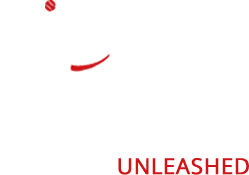 All Dogs Unleashed Austin