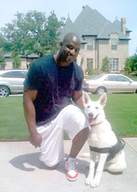 All Dogs Unleashed Austin Texas All Dogs Unleashed Dallas